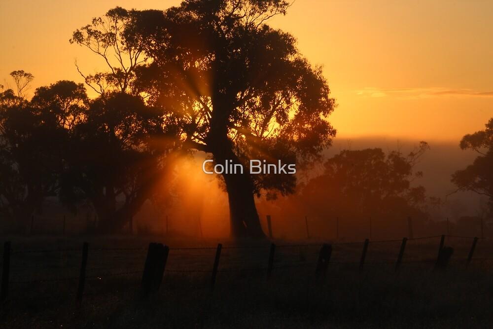 Shining Through.... by Colin Binks