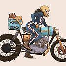 Women Who Ride - The Worst Bike V. 2  by Amanda Zito