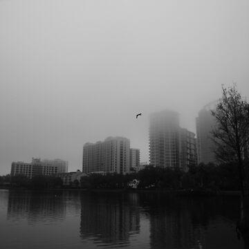 Morning Fog  by LeonidasBratini