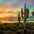 Sunrise Calling in The Southwest  by Saija  Lehtonen