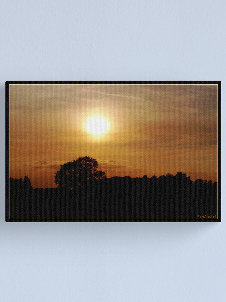 Alternate view of Afternoon Canvas Print