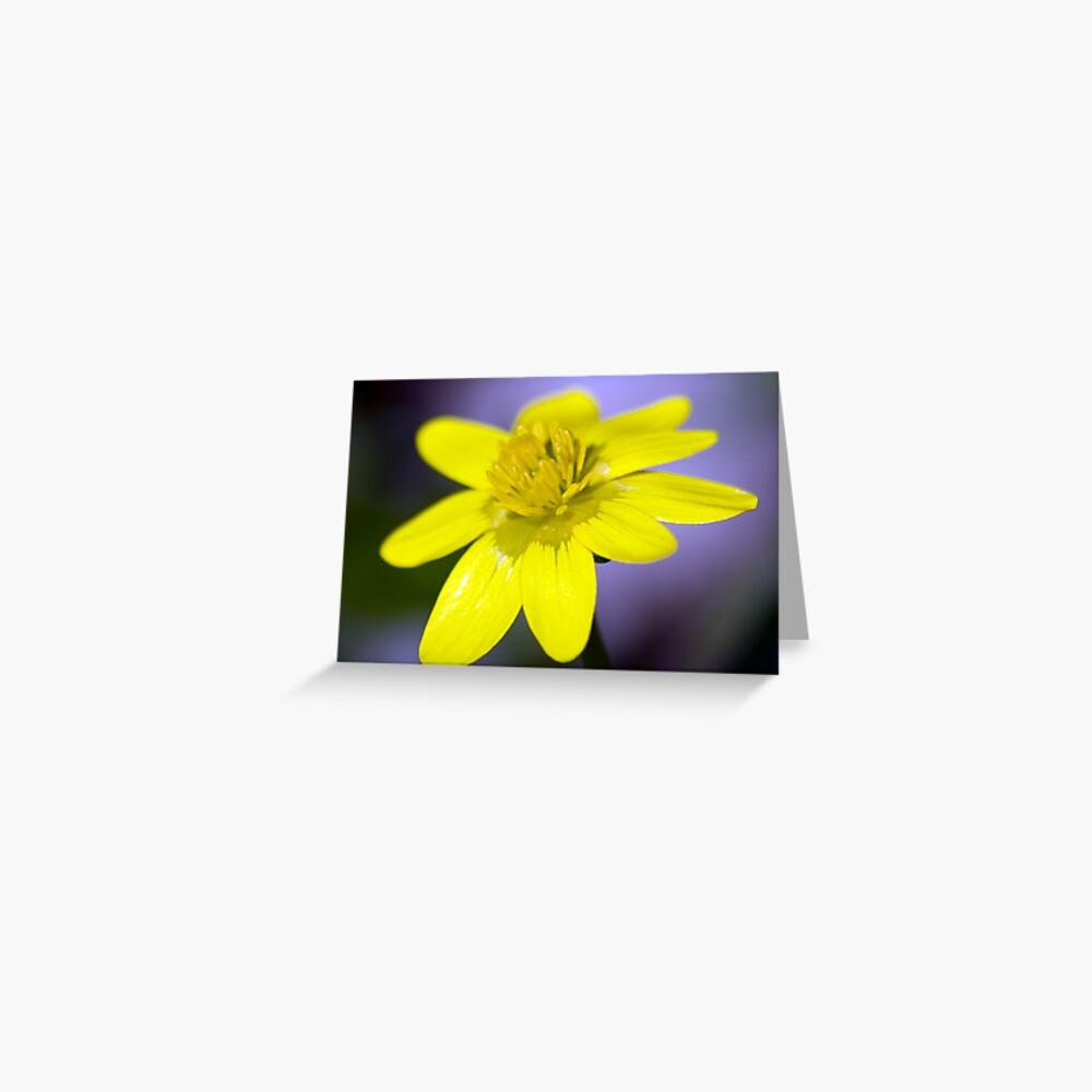 Yellow Celendines Greeting Card