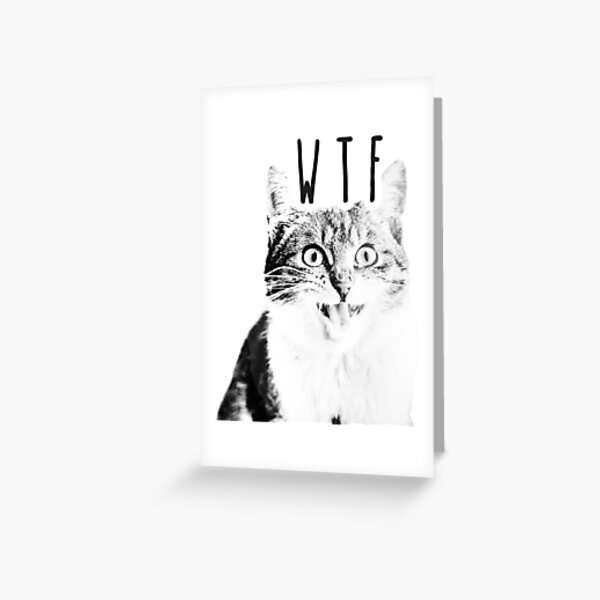 WTF Cat Greeting Card