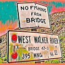 No Fishing From Bridge (Colorful) by Joe Lach