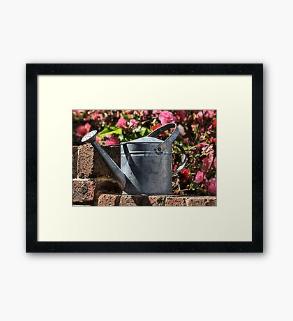 Thirsty in the sun. Framed Print