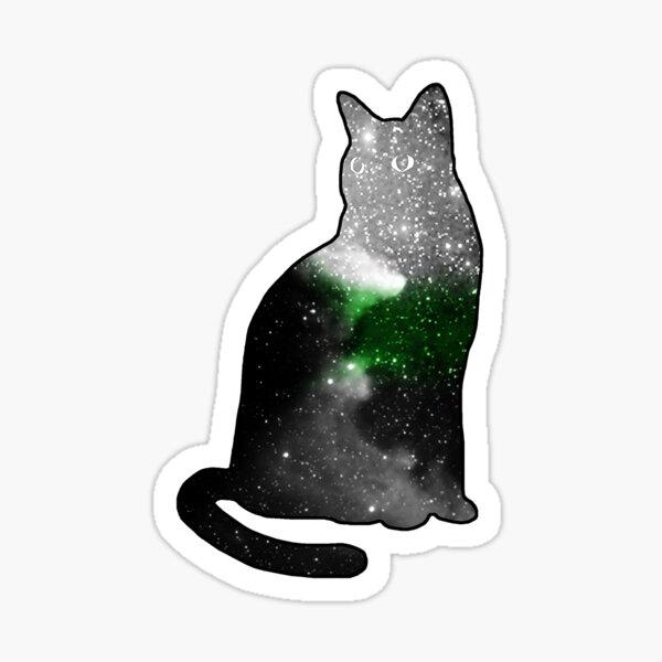demiromantic pride space kitty Sticker