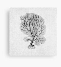 Black Coral Seafan Illustration Nautical Nature Decor Metal Print