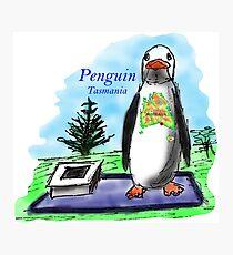 The town of Penguin, Tasmania Photographic Print