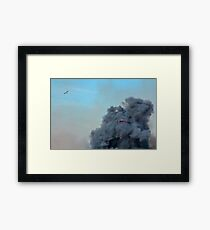 It's a Bird, It's a Plane Framed Print