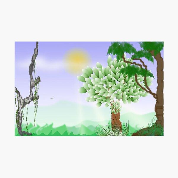 Trees Scene Line Art Design Photographic Print