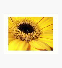Sunshine Yellow Art Print