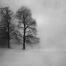 Snow Queen by Riggzy