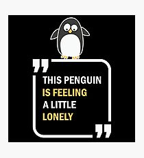 This Penguin is feeling a little lonely in summer Photographic Print