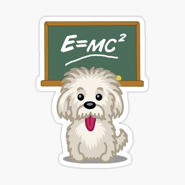 Shihtzu Shitzu Einstein dog tshirt - Dog Gifts for Shihtzu and Maltese Dog Lovers Sticker