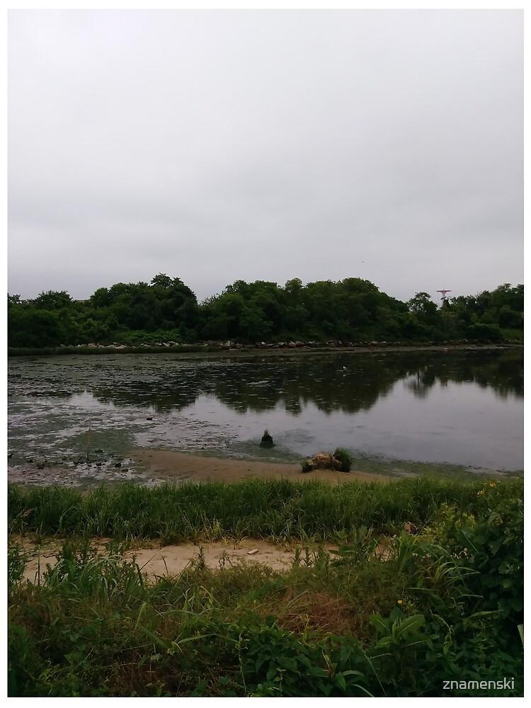 Calvert Vaux Park Coastal Habitat Improvements, #Calvert #Vaux #Park #Coastal #Habitat #Improvements, #CalvertVauxPark #CoastalHabitatImprovements,  by znamenski