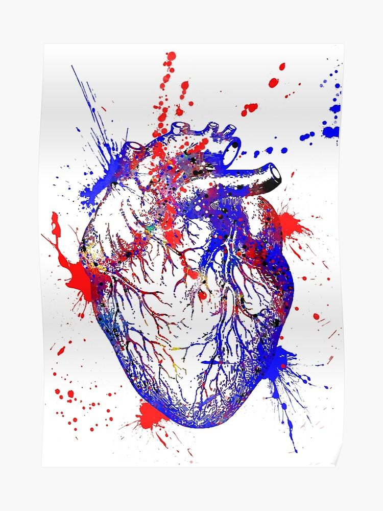 Human Heart Heart Anatomy Medical Art Watercolor Heart Heart Print Abstract Heart Poster