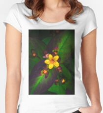 Out foraging Women's Fitted Scoop T-Shirt