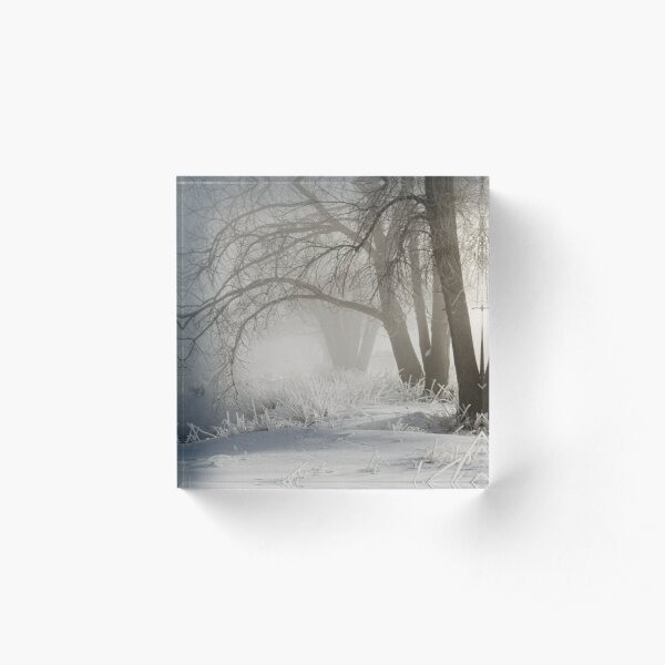 Etched By Snow - Sawhill Carvings Acrylic Block