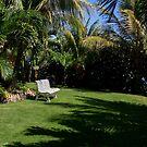 Tropical Summer Garden by DARRIN ALDRIDGE