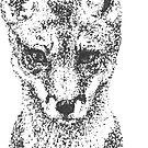 «Fox joven» de AnnaKelleher