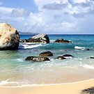 The Tropic's Rock by DARRIN ALDRIDGE