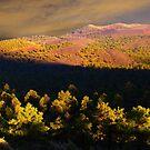 Cinder Hills by BGSPhoto