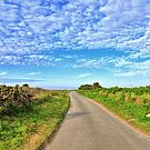 The Road to? by NeilAlderney