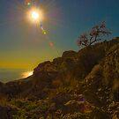 sunstroke by Robert C Richmond