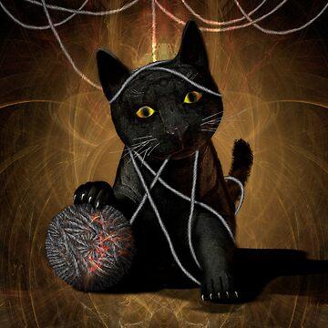 Cat and Chaos by fotokatt