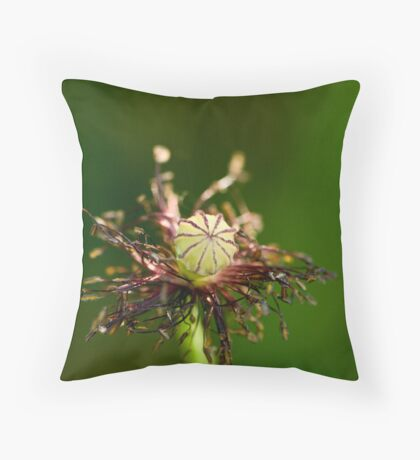 Accessoire Throw Pillow