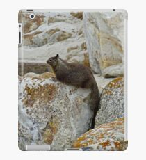 California Ground Squirrel-dom  iPad Case/Skin