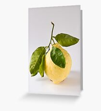 Citron/Cedro Greeting Card