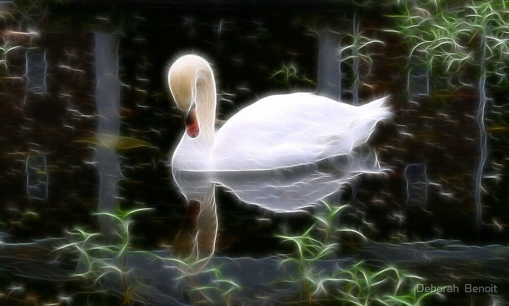 Reflections In A Pond by Deborah  Benoit