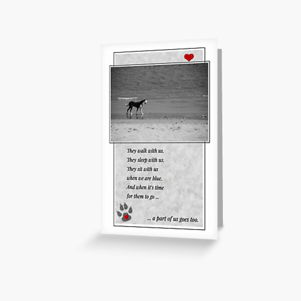 Pet Sympathy Loss of a Dog Black and White Sentimental Beach Greeting Card