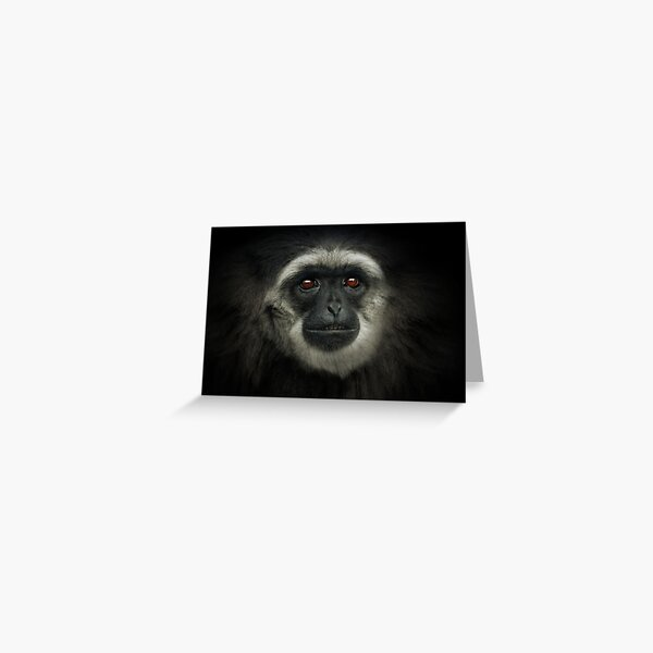 Silvery Gibbon Greeting Card