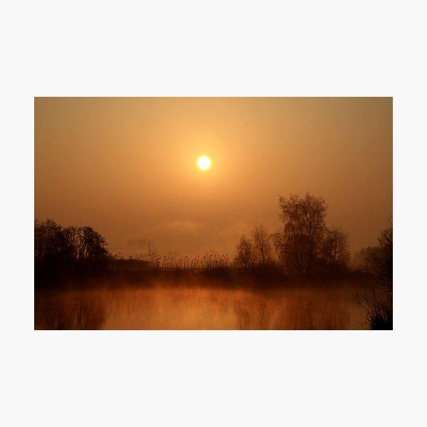 Heron lake  Photographic Print