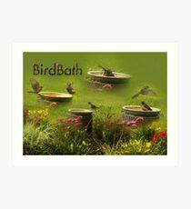 Birdbath Art Print