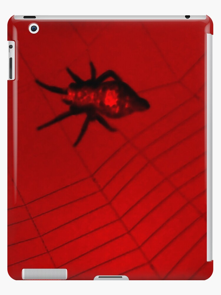 Red & Black Spider 2 by Dawne Dunton