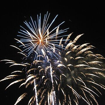 Fire Works by shawphotography