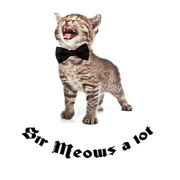Sir Meows a lot  by House-of-Roc