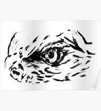 Sketch 77 - Eagle eye Poster