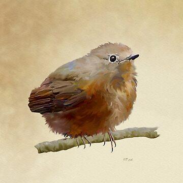 Bird: Juvenile Robin by bamalam-art