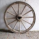 wheel by Angelala
