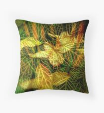COLOURS & PATERNS OF NATURE Throw Pillow