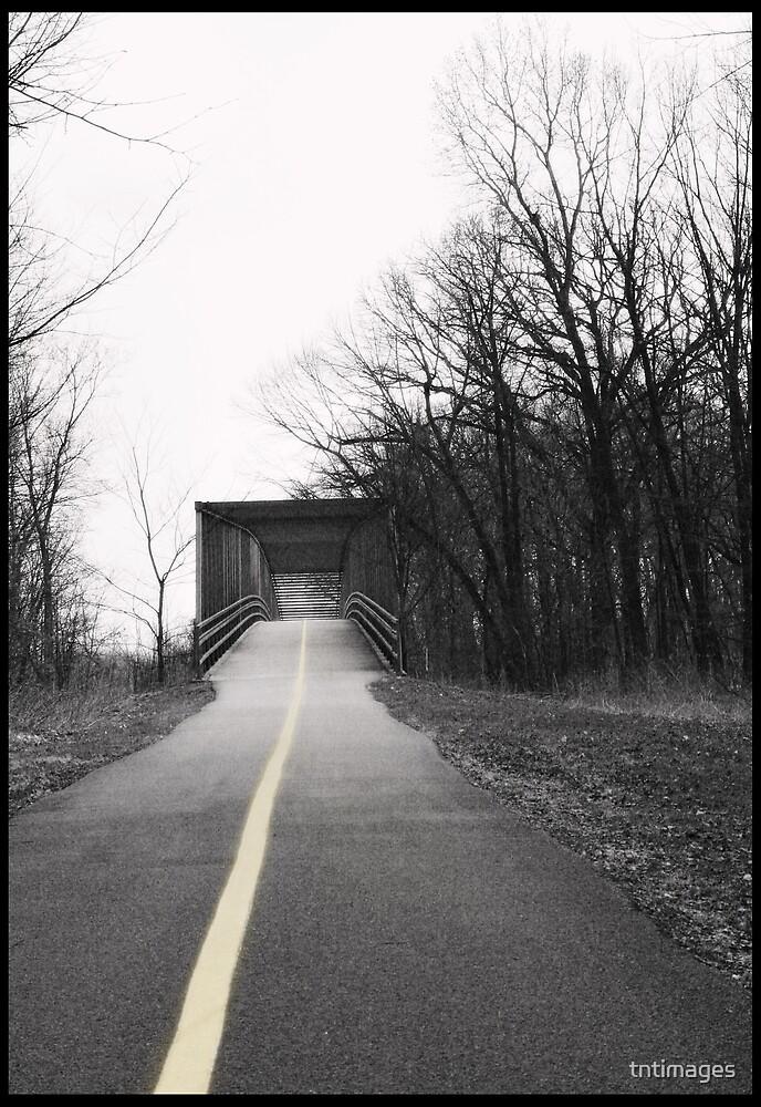 The Bridge by tntimages