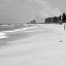 Beach Scene by Donna Adamski