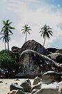Big Boulders On Baths Beach by DARRIN ALDRIDGE