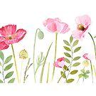 « Coquelicots roses » par MarieDricot