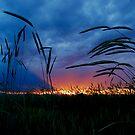 Monday's Sunset by Pamela Hubbard