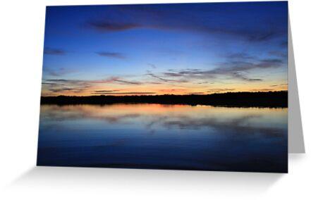 Creek Reflections by Sheldon Pettit